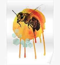 Honey bee watercolour Poster