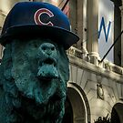 A telephoto shot of the Art Institute Lion with a Chicago Cub hat on  by Sven Brogren