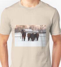 Four horses grazing on snowy pasture Unisex T-Shirt