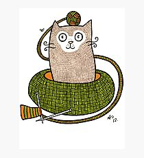 Knit One Purrl One Photographic Print