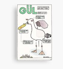 Seagull Assembly Instructions Canvas Print