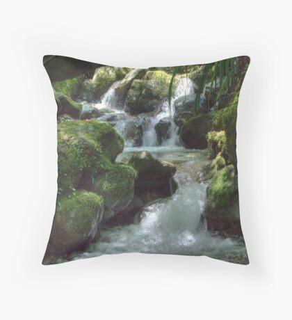 Waterfall,Lamington National Park, Queensland, Australia  Throw Pillow