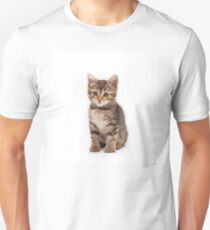 Little cute tabby kitten isolated on white background Unisex T-Shirt