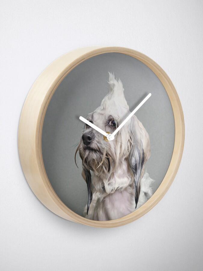 Alternate view of Wet Dog, Oscar Clock