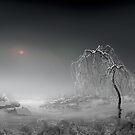Frosted Sun by Igor Zenin