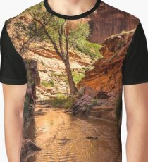 Desert Canyon Paradise - Coyote Gulch - Escalante, Utah Graphic T-Shirt