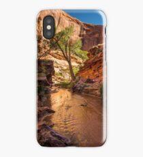 Desert Canyon Paradise - Coyote Gulch - Escalante, Utah iPhone Case/Skin