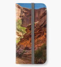 Desert Canyon Paradise - Coyote Gulch - Escalante, Utah iPhone Wallet/Case/Skin
