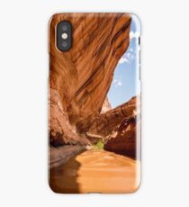 Lower Coyote Gulch - Grand Staircase - Escalante, Utah iPhone Case/Skin