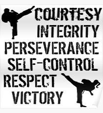 Taekwondo - TKD Tenets, Martial Arts, Kickers Poster