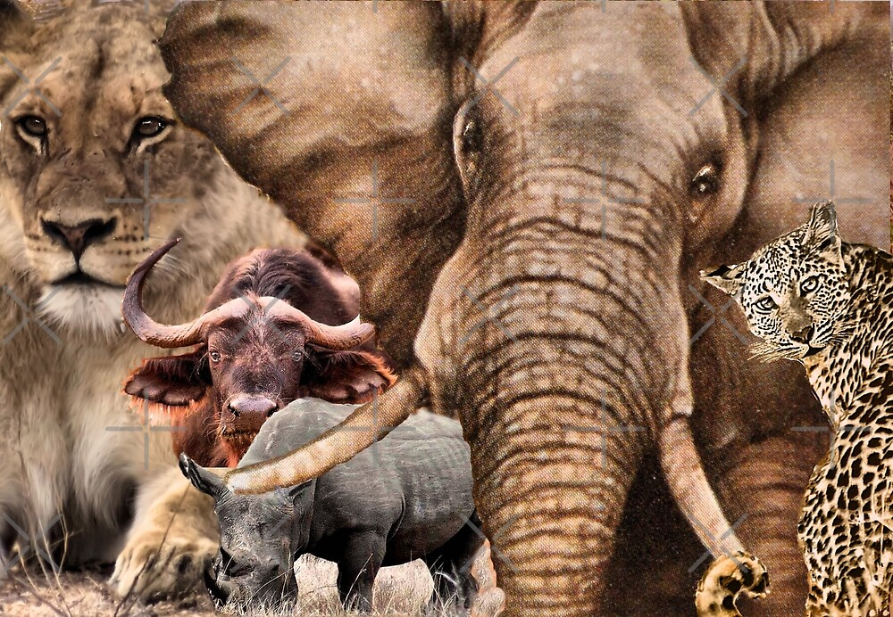"A COLLAGE OF AFRICA'S ""BIG 5"" -  by Magriet Meintjes"