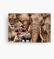 """A COLLAGE OF AFRICA'S """"BIG 5"""" -  Canvas Print"""