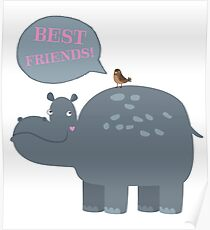 Best friends hippo and bird Poster