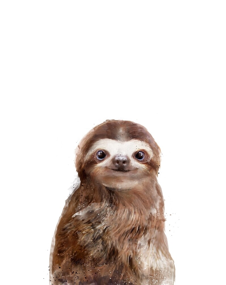 Little Sloth by Amy Hamilton