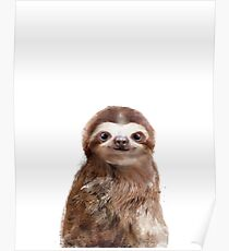 Little Sloth Poster