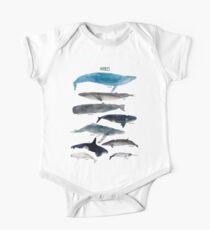 Wale Baby Body Kurzarm