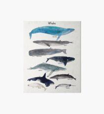 Wale Galeriedruck