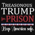 TREASONOUS TRUMP FOR PRISON by Greenbaby