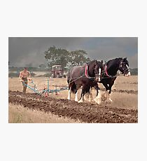 Ploughing its a slow job  Photographic Print