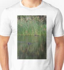 Swamp hen Unisex T-Shirt
