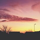 Warm Pink Winter Sunset by lolohannah