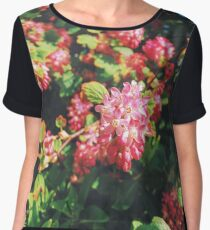 Spring Flowers Close Up Women's Chiffon Top