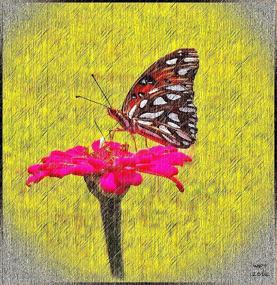 Butterfly on a Flower by Rockett Graphics