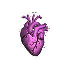 Anatomy pink love heart.  by Alejandro Durán Fuentes