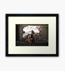 Master Chief Riding a bear while being rode by a baby bear  Framed Print
