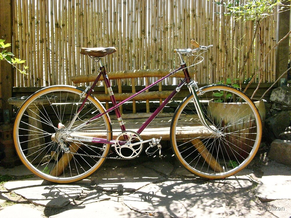 Vintage French Mixte by njwilken