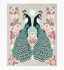 Peacocks by Andrea Lauren  Photographic Print