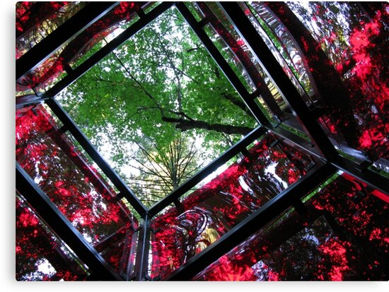 square cube of nature by Bruce  Dickson