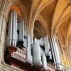 Organ in Truro Cathedral by kalaryder