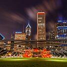 Millennium Park by Radek Hofman
