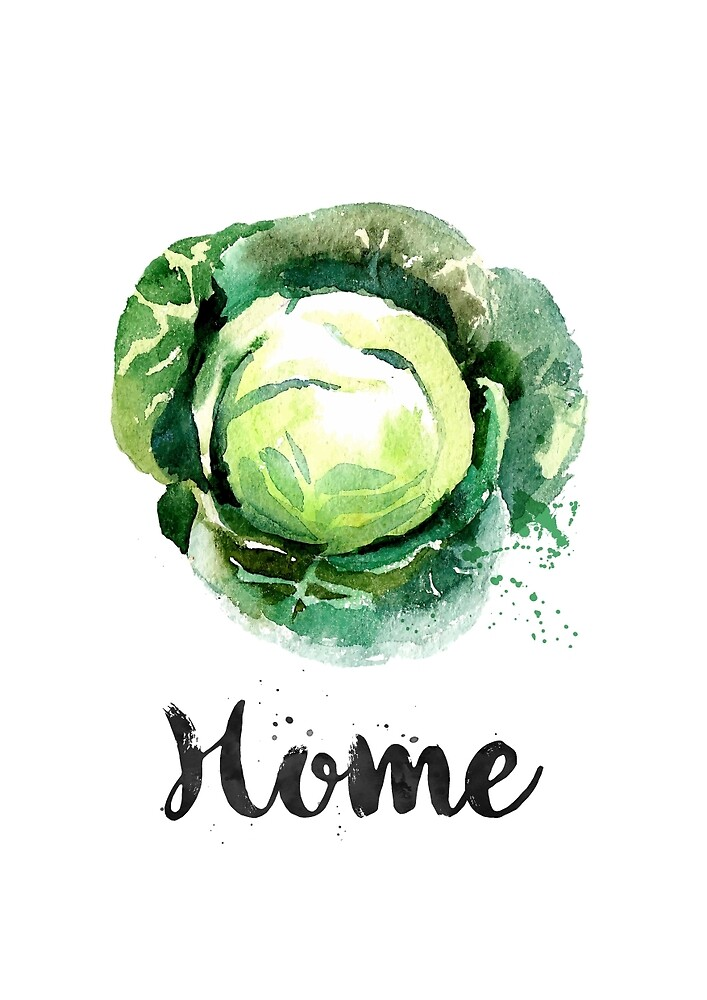 Cabbage. Home by found in  Atlantis