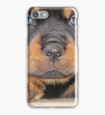 Cute Rottweiler Puppy With Blue Eyes iPhone Case/Skin
