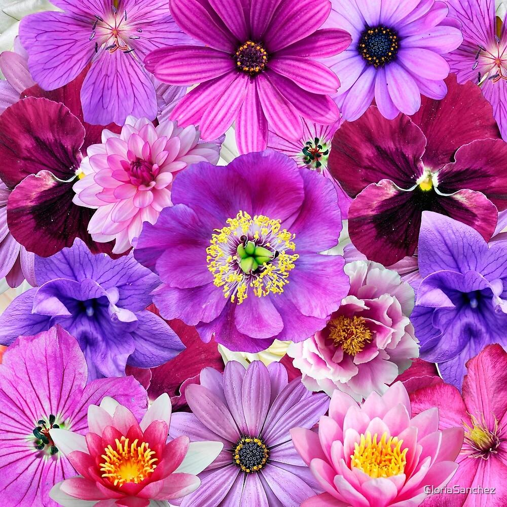 PURPLE FLOWERS by GloriaSanchez