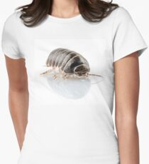 Pill-bug armadillidium vulgare species isolated on white background Womens Fitted T-Shirt