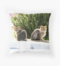 Kittens enjoy Greek Sun Throw Pillow
