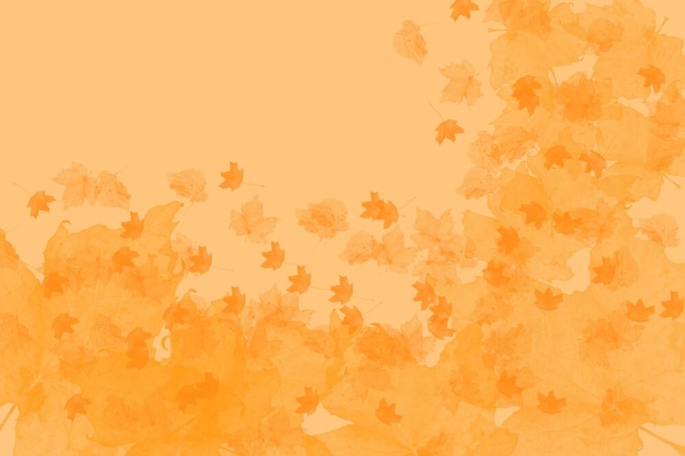 Autumnal Design - 2 by Andrea Mazzocchetti