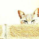 Wary eyed by iamelmana