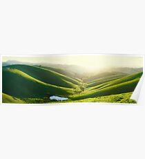 Green Hills, Gippsland, Victoria, Australia Poster