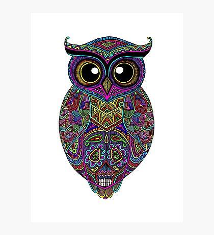 Skull Owl Photographic Print