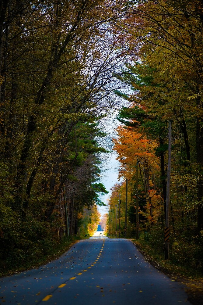 Fall Road by justinrusso