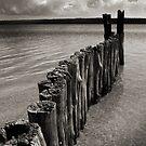Lake Cabarita by Matt Mawson