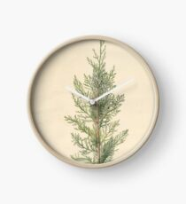 Vintage Botanical Juniper Branch Clock