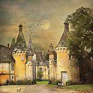 Chateau de la Pellonnière II by dawne polis
