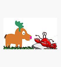 Moose Meets Crab Photographic Print