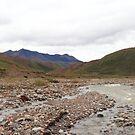 Panoramic Denali by zumi