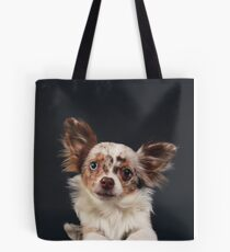 Chihuahua - Red merle on black / dog blue eye odd longhair cute bff friend tiny dog Tote Bag